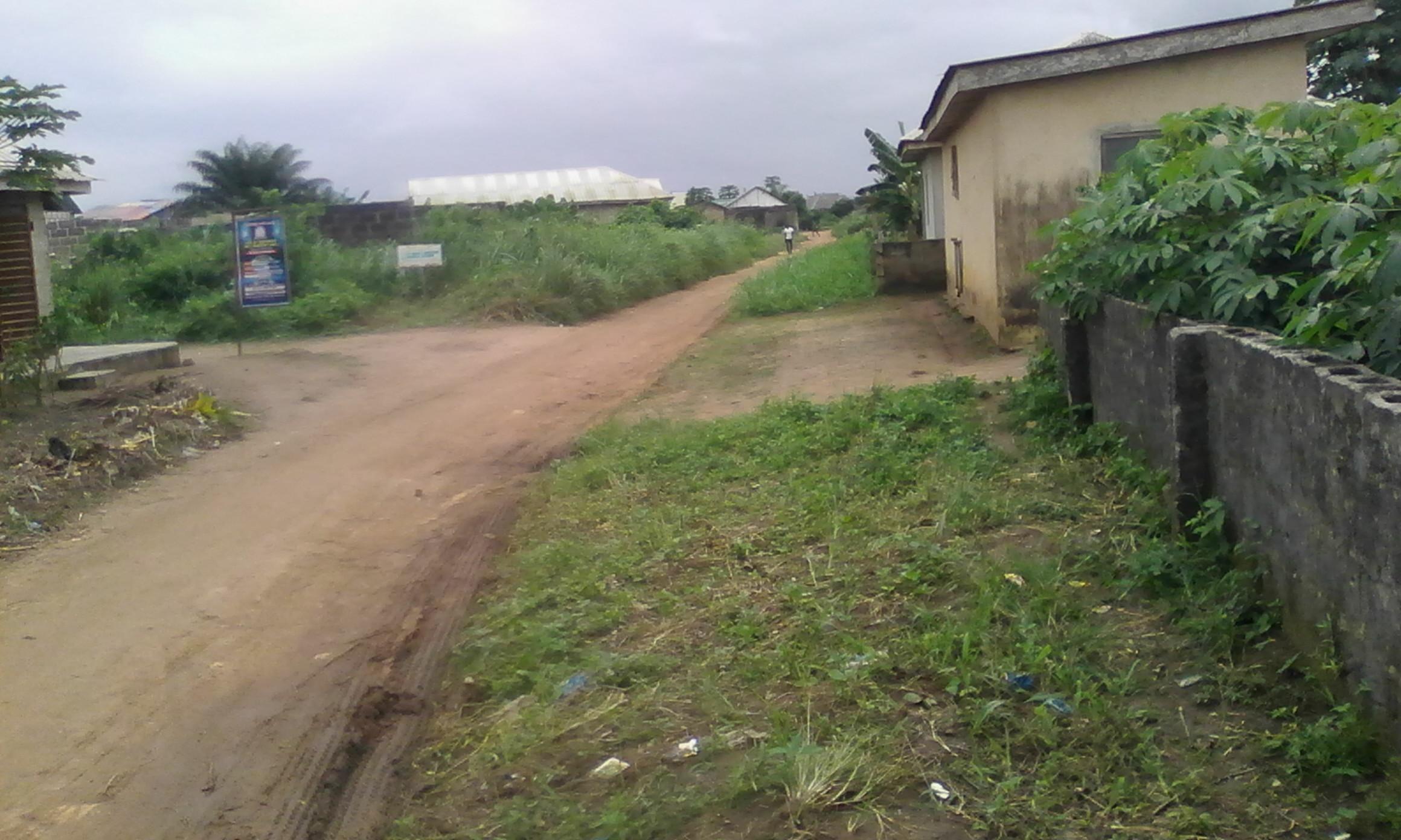 Property Street View