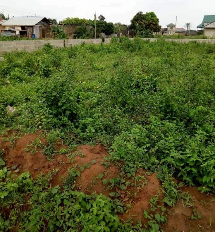 2 Plots of land Ikorodu